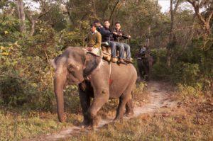 Hotels in Jaldapara | Hollong lodge booking | hollongecoresort.com