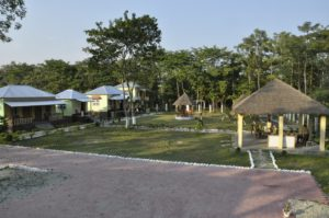 jaldapara hollong resort